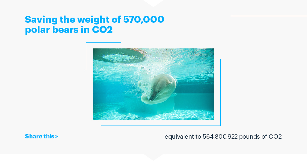 Saving the weight of 570,000 polar bears in CO2