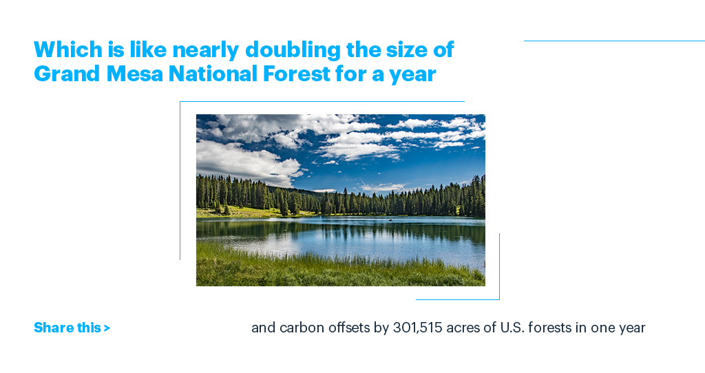 Which is like nearly doubling the size of Grand Mesa National Forest for a year